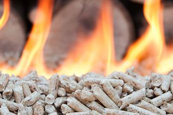 ecogreen_biomass